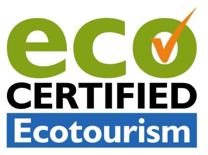 Townsville Whale Watching Tours-Eco Tourism